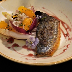 Pan fried fillet of sea bream, chicory, fennel & orange salad,	red wine reduction